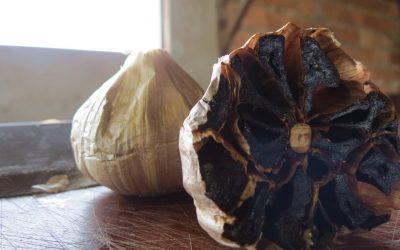 Por que consumir o alho negro