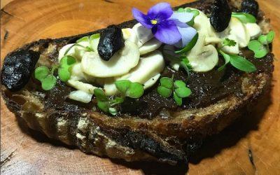Torrada artesanal com pasta de alho negro, cogumelos, alho negro, brotos e flores